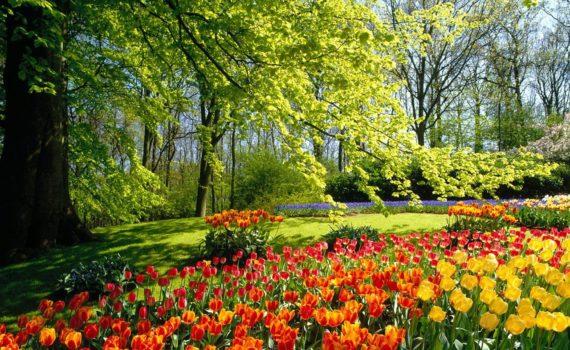 Весна время очищения кармы